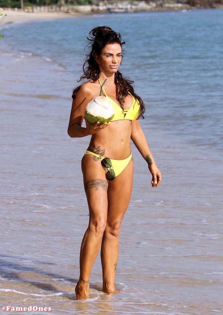 Katie Price hot yellow bikini pics FamedOnes.com 040 01